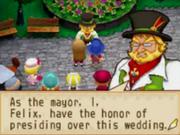 Wedding grand bazaar