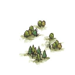File:Fangorn2 (2).jpg