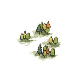 File:Forest3 (2).jpg