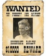 Wantedposter1 1403240345