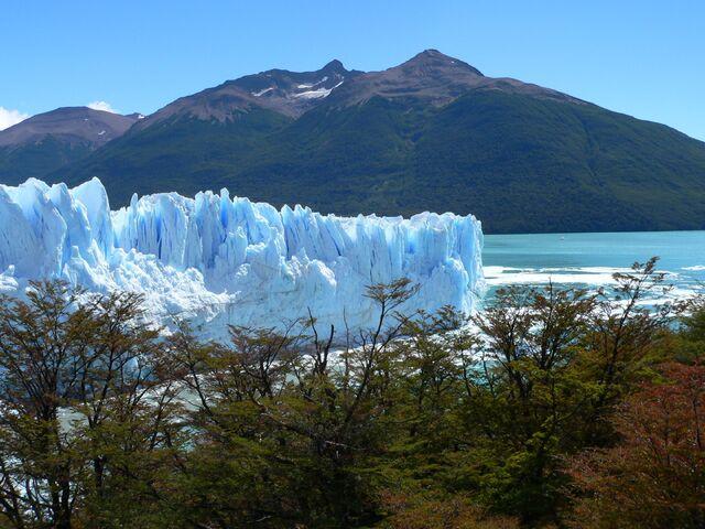 File:Iceforest,Threetreeforest,High mountain.jpg