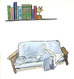 Bookshelf and Futon