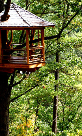 File:Treehouse.jpg