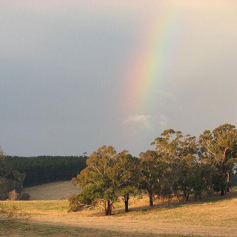 File:Rainbow's end.jpg