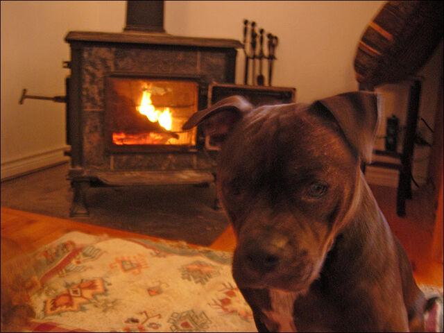 File:Wood stove-7842.jpg