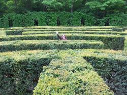 Chenonceau Hedge Maze