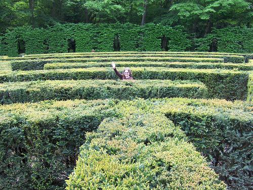 File:Chenonceau Hedge Maze.jpg