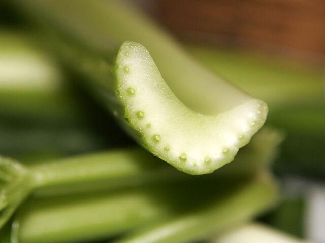 File:Celery.jpg