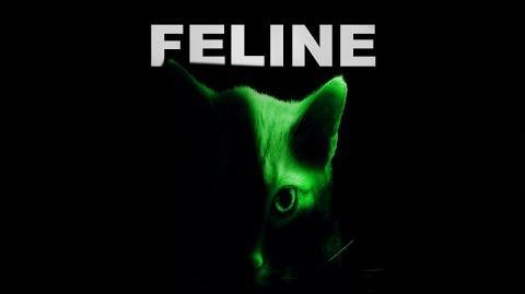FELINE by Killahawke1 - CREEPYPASTA