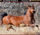 Slider Puzzles