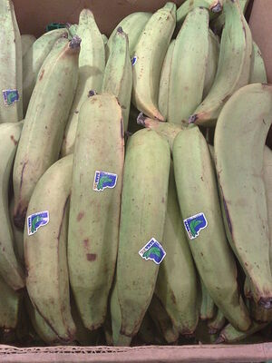450px-Plantains