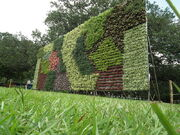 800px-Vertical Garden from Lalbagh flower show Aug 2013 8790