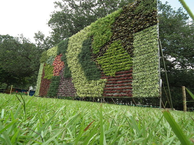 File:800px-Vertical Garden from Lalbagh flower show Aug 2013 8790.jpg