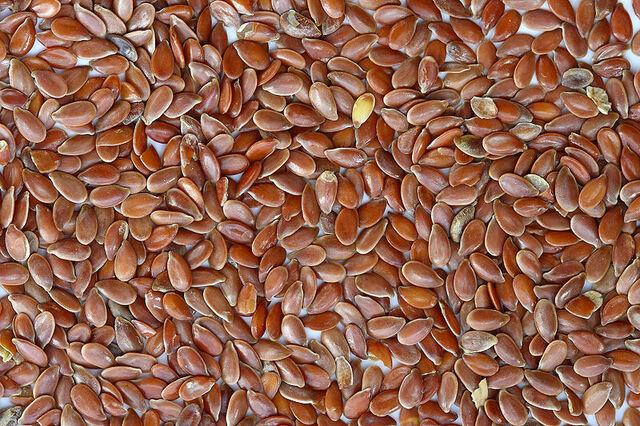 File:800px-Brown Flax Seeds.jpg