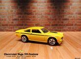 Custom V8 Vega 2009
