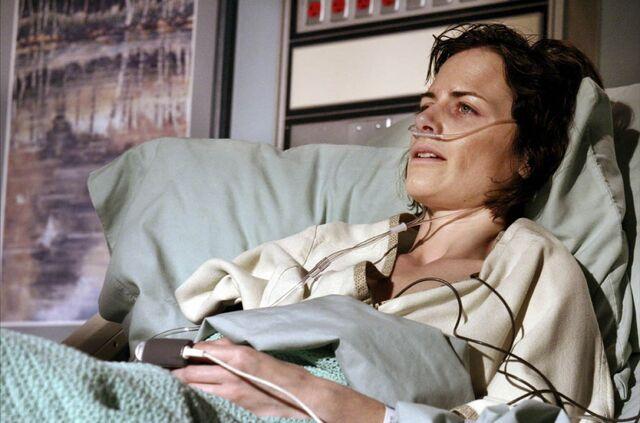 File:Docteur-house-serie-tv-02-g.jpg
