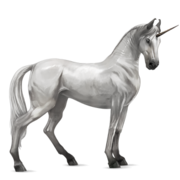 Marwari Unicorn - Light Gray