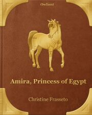 Amira Book