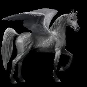File:Arabian Pegasus - Dapple Gray.png