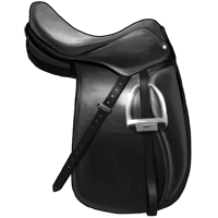 File:Made-to-Measure Saddle.png