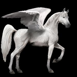File:Arabian Pegasus - Fleabitten Gray.png