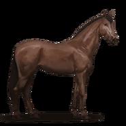 Don-Pferd.Dunkelfuchs
