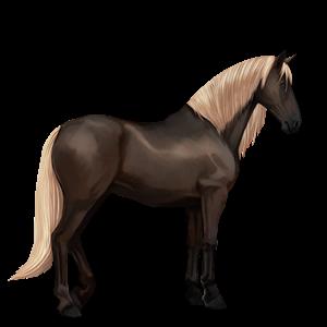 Datei:Dunkelfuchs mit heller Mähne, Pferd.png