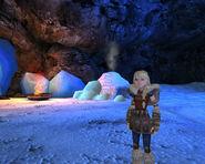 Icestorm-island