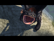 Toothless(39)
