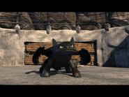 Toothless(20)