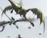 Dragon 11.1