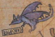 Map dragon 29