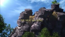 The Next Big Sting title card