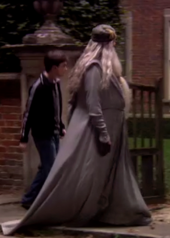 File:Dumbledore Or Fat Lady.png
