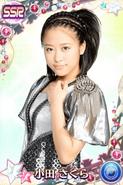 Oda SakuraSSR16