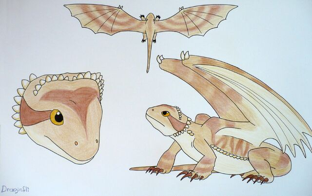 File:Draginfli's Bearded Dragon.jpg