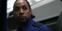 TSA Guard/Thug