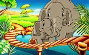 Elephants Exhibit