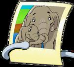 Elephants Picture