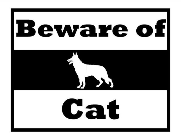File:776px-Beware of cat.jpg