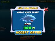 Great White Shark Discount