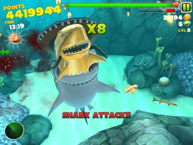 File:Yolo shark.jpg