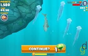 File:Jellyfish.jpeg