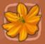 File:Orange cosmos.png