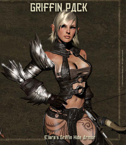 File:Elara griffin hide armor.png