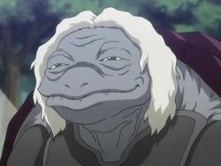 Turtle ant anime