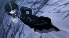 Feitan during the Shadow Beasts fight