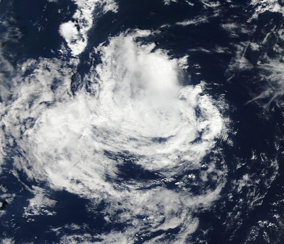 File:Tropical Storm Gert Aug 16 2011 Terra.jpg