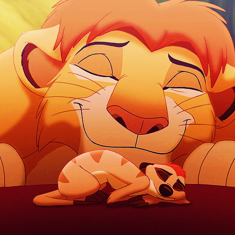 File:The lion king simba and timon by xdisney-d4fek0q.png