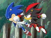 Shadow beats Sonic